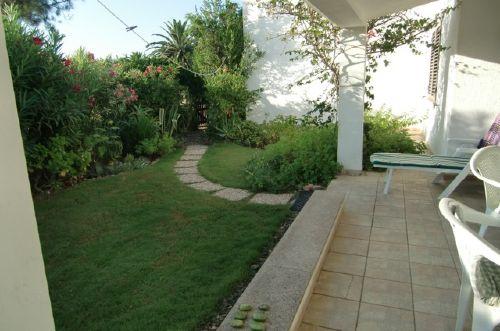 Vordergarten mit Oleander
