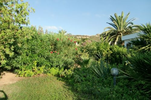 Garten mit Blick auf den Berg