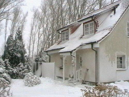 Pappelhof im Winter