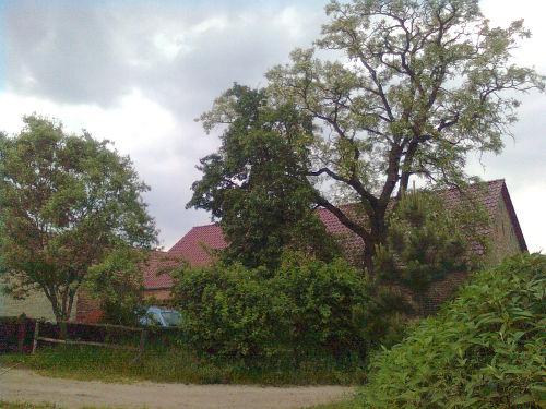 Umgebung von Meadow Ranch Körzin