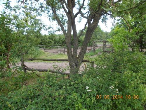 Zusatzbild Nr. 10 von Meadow Ranch Körzin