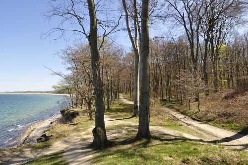 Ostsee Weißenhäuser Strand / Ostholstein