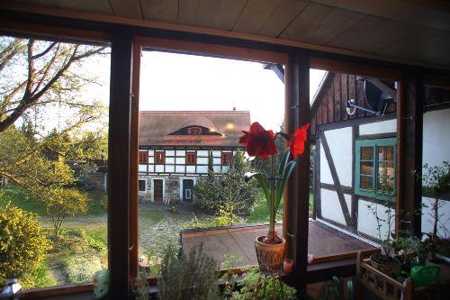 Blick Wintergarten auf Innenhof im März