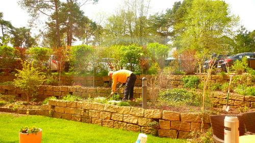 Ihr Vermieter bei der Gartenpflege