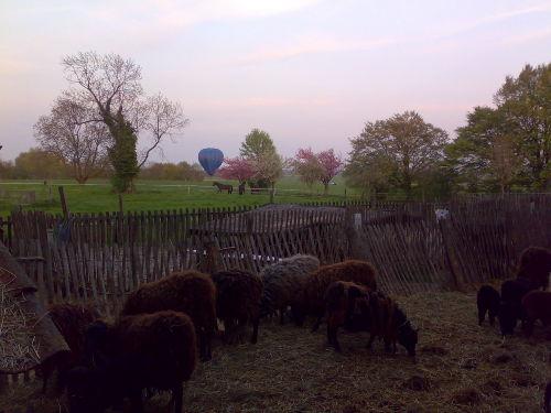 Fachwerkhof, umgeben von Wiesen u Weiden