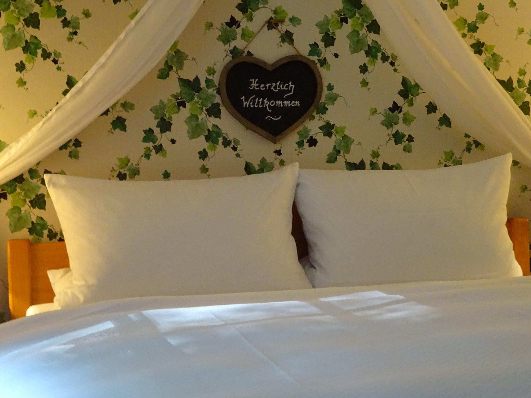 Schlafzimmer mit 1 Bett & Schlafsofa