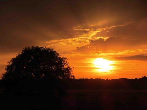 Charlottes Blick in den Sonnenuntergang