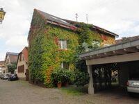 Ferienwohnung Blumenstiel in Neustadt an der Weinstraße - kleines Detailbild
