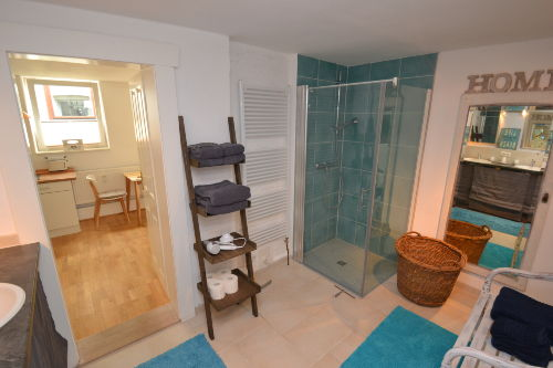 Badezimmer mit Tageslicht-Duschbad