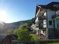 Ferienwohnung Schwarzwaldsteig in Bad Peterstal-Griesbach - kleines Detailbild