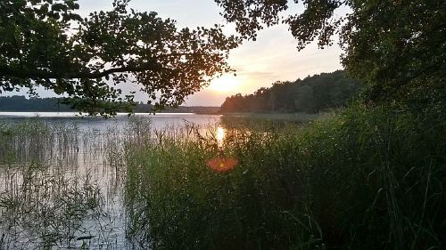 Der Fei�neck-See, ein sch�ner Spazierweg