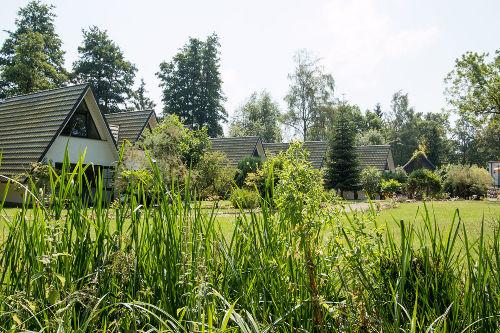 Blick aus dem Garten auf die Finnhütten