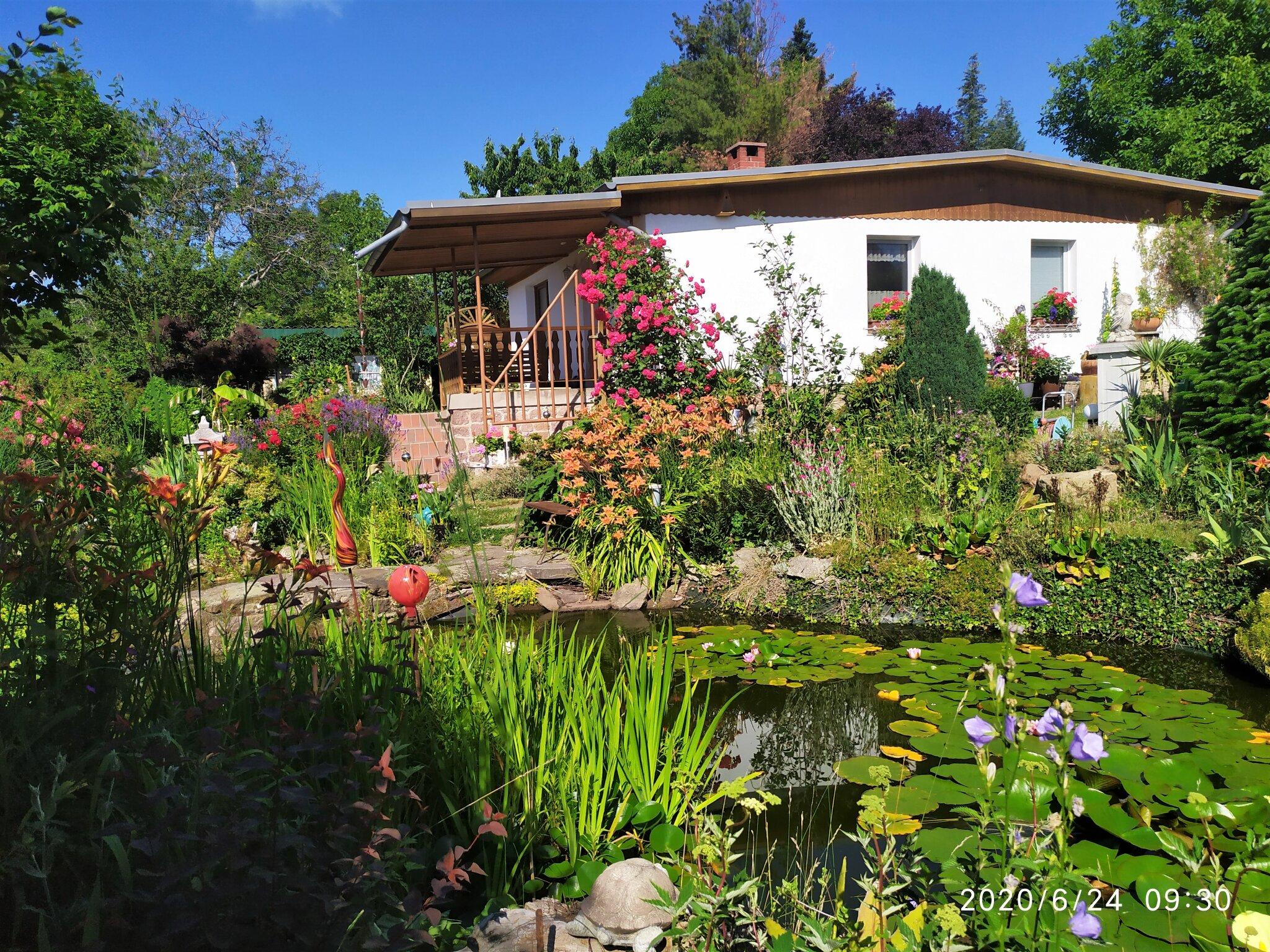 Terrasse mit Blick auf den Gartenteich