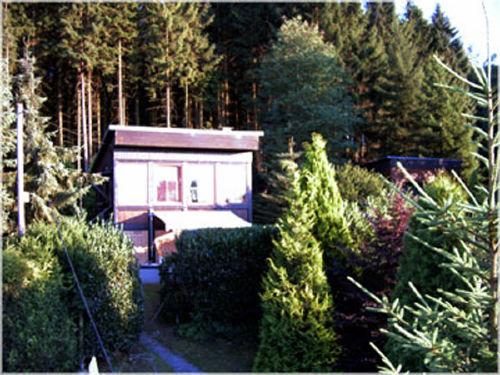 Unser Waldh�uschen in der Sonne