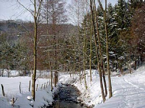 Ein Winter-Spaziergang tut gut