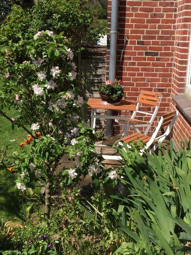 Zusatzbild Nr. 11 von Haus Petersen - Ferienwohnung Nr. 7 Terrassenwohnung