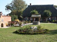 Hof Seelvitz - Ferienhaus 'Birlibi' in Zirkow - kleines Detailbild