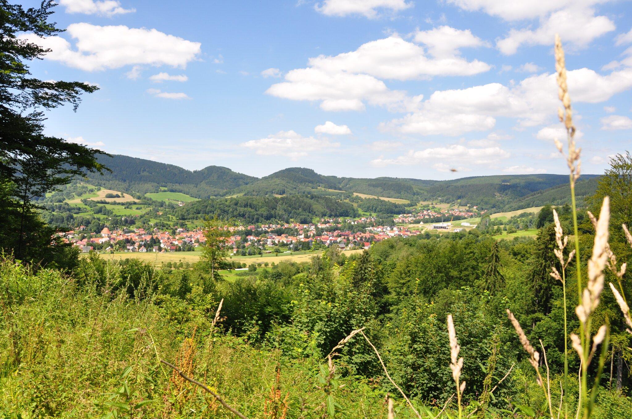 Blick auf den Ort Seligenthal