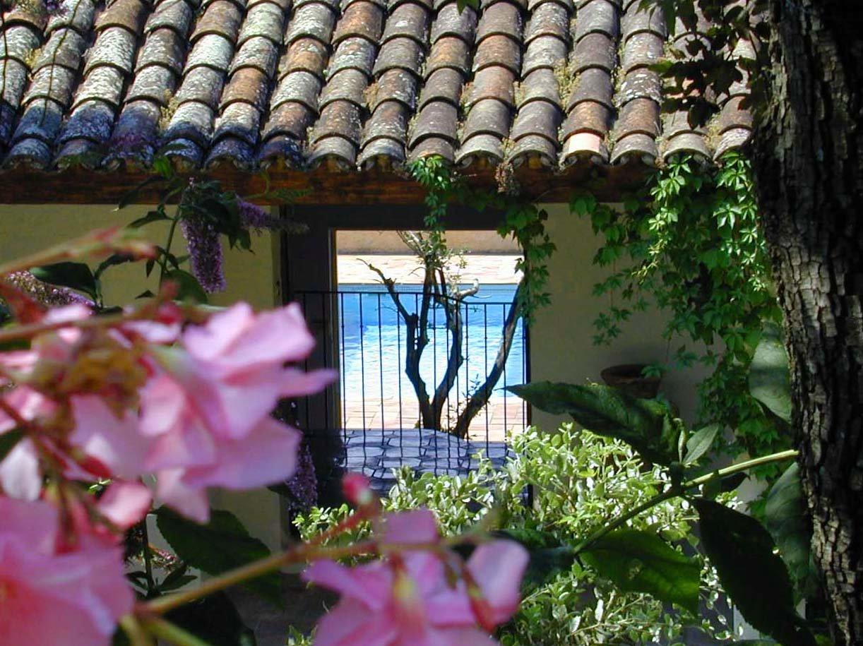 Zusatzbild Nr. 01 von Villa Melocoton