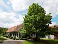 Lindenhof am Steinberg - Ferienwohnung Morgenrot in Riegersburg - kleines Detailbild