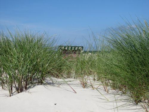 Dünenlandschaft mit Strandkorb