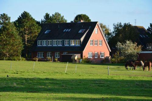 Detailbild von Haus Pax - Appartement 1