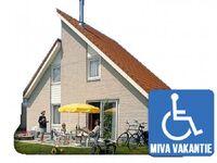 Luxus FerienVilla für Behinderte in Scharendijke - kleines Detailbild