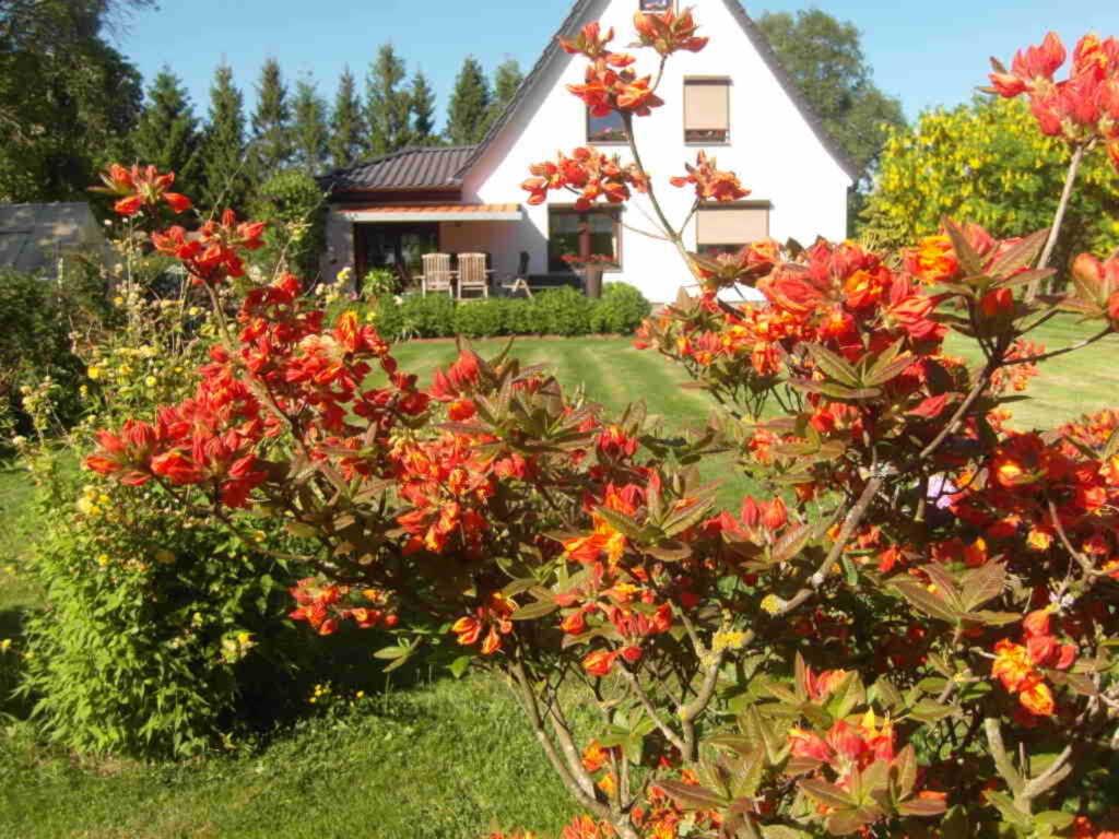 Ferienhaus To Hus WE143, Fewo 1