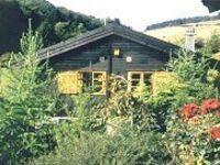Ferienhaus Menzel in Willingen-B�mighausen - kleines Detailbild