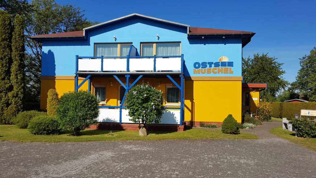 Ostsee-Muschel, Wohnung 4