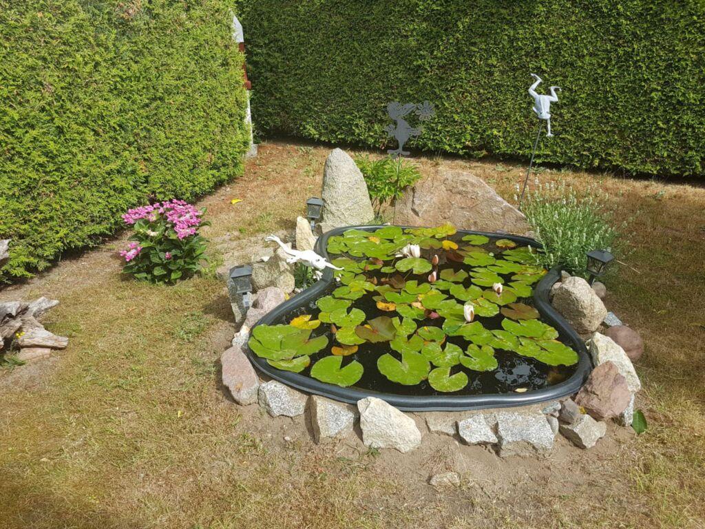 Ostsee-Muschel, Wohnung 10