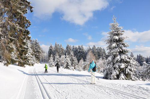 Ski fahren im Thüringer Wald