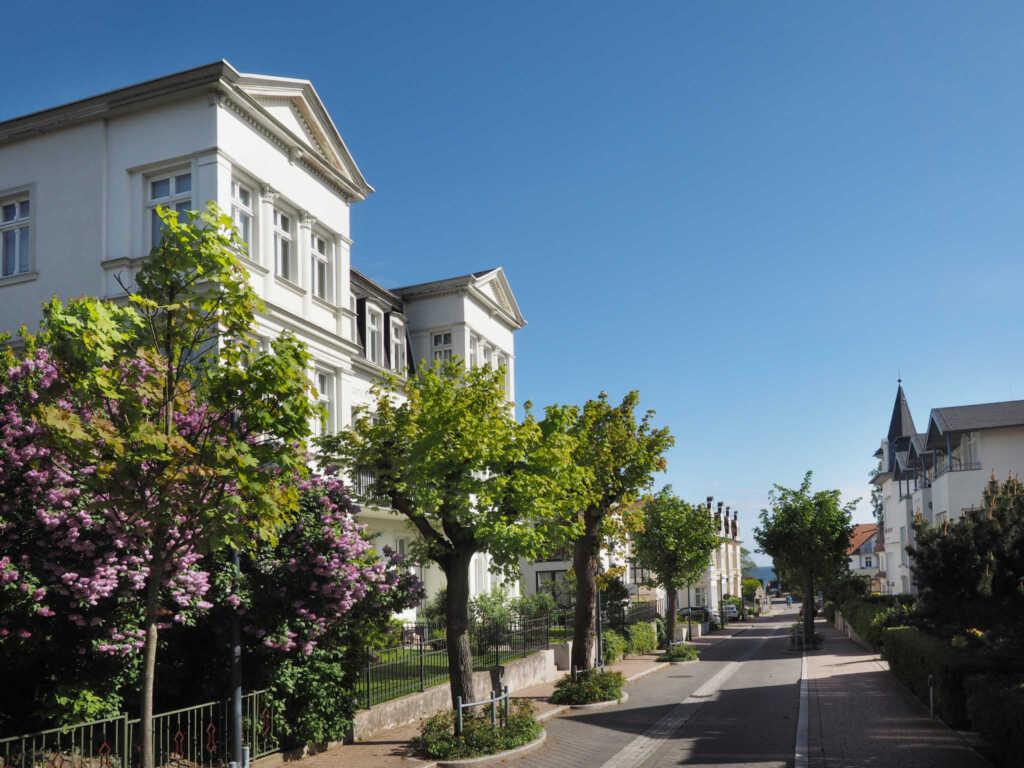 Villa Bismarckshöhe, Ferienwohnung Alma