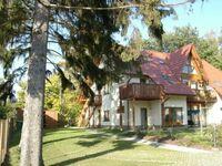 Ferienwohnung Veronika, Ferienwohnung in Koserow (Seebad) - kleines Detailbild