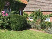 FeWo Abshagen, Ferienhaus in Stadland - kleines Detailbild