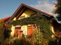 Ferienwohnungen im Haus Gaja, Morgenstern in Heringsdorf (Seebad) - kleines Detailbild