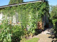 Ferien auf dem Land - Friedrichsdorf F 575, Gartenhaus: 2- Raum (max. 4 Pers.) in Friedrichsdorf - kleines Detailbild