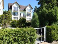 Ferienwohnungen Will grünes Haus, Ferienwohnung 'Jörg' EG in Ahlbeck (Seebad) - kleines Detailbild