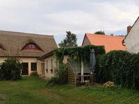 Ferienwohnung  Dorfstraße 24; Erhard Wolff, Ferienwohnung , Dorfstr. 24 in Warthe - kleines Detailbild