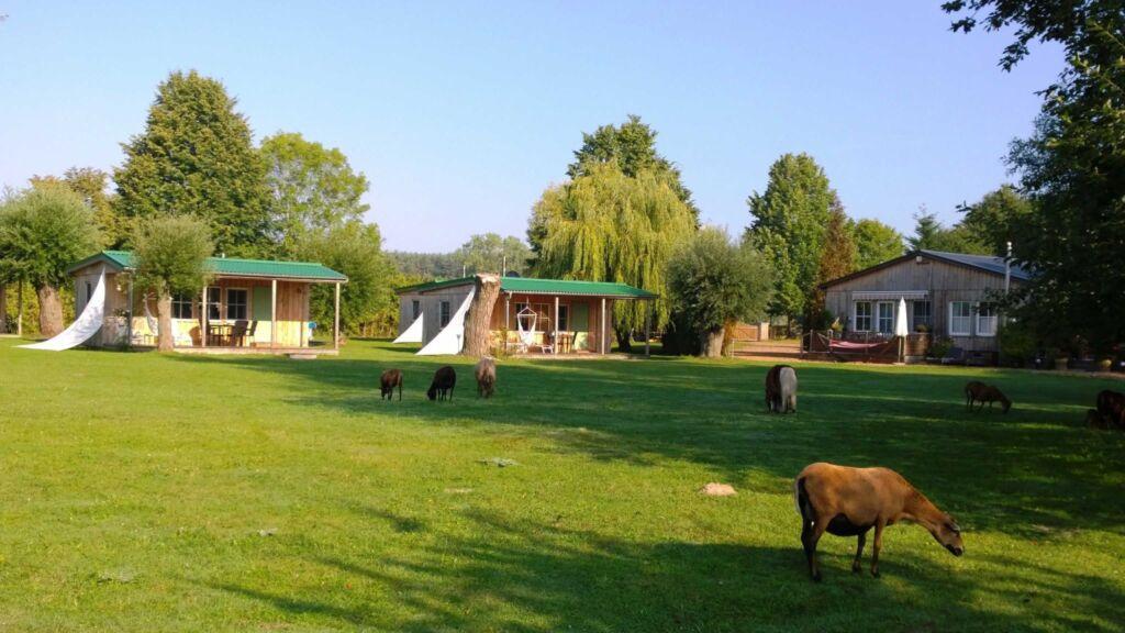 Ferienresort zum M�wenort, Bungalow 11