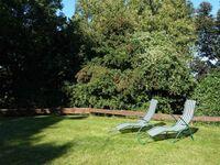 FeWos mit Gartennutzung bei Lohme - Königsstuhl mit WLAN, Mehlschwalbe in Lohme auf Rügen - kleines Detailbild