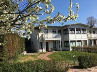 Gartenhaus Villa Sanssouci, WE 2 B  Apartmentvermietung Sass, Whg. 2 B in Heringsdorf (Seebad) - kleines Detailbild