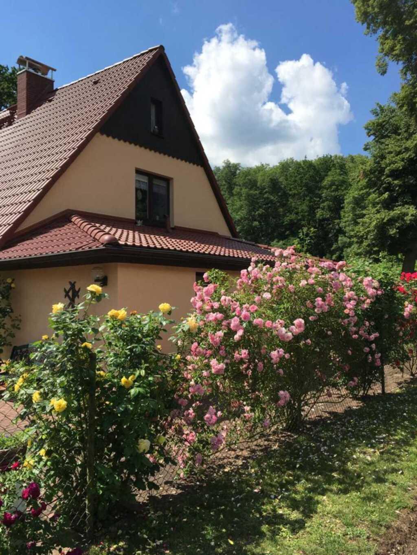 Rosi's Ferienwohnung an der Lieps, Ferienwohnung