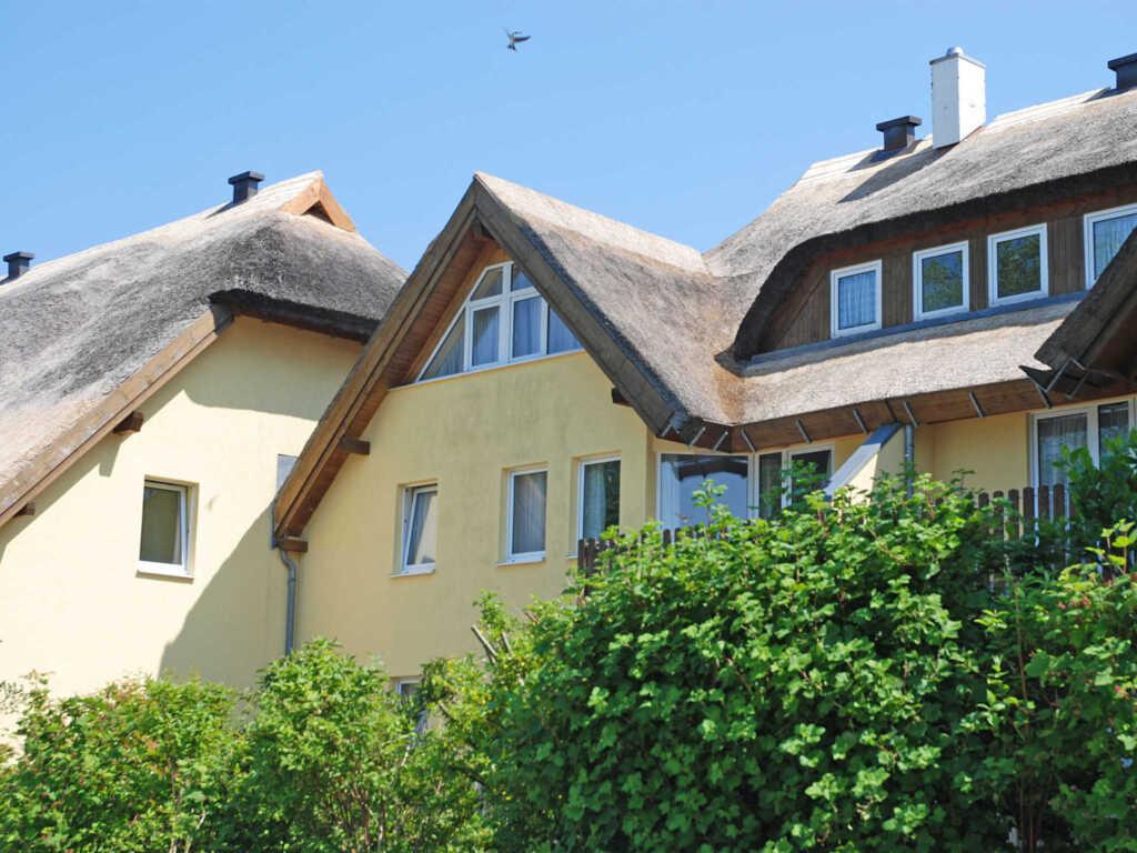 Strandhaus Lobbe F545 WG 5 im Erdgeschoß mit Terr