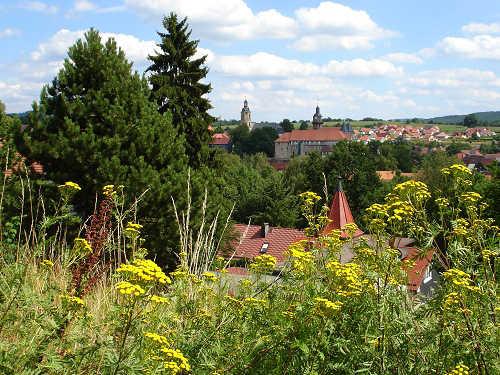 Blick auf den Ort Schleusingen