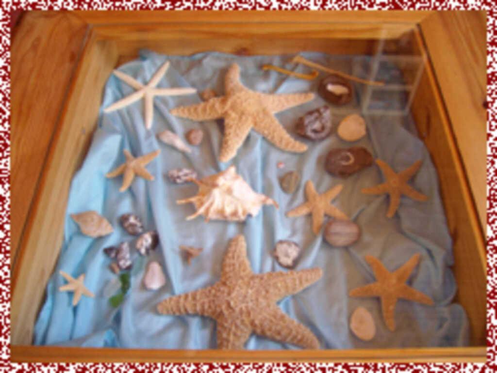 Ferienwohnung 'Seestern'
