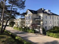 Strandhaus Aurell - direkt am Ostseestrand, Typ IV -  Nr. 4 in Bansin (Seebad) - kleines Detailbild