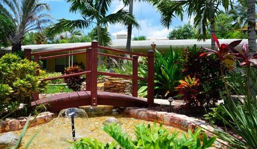 Unser tropischer Garten