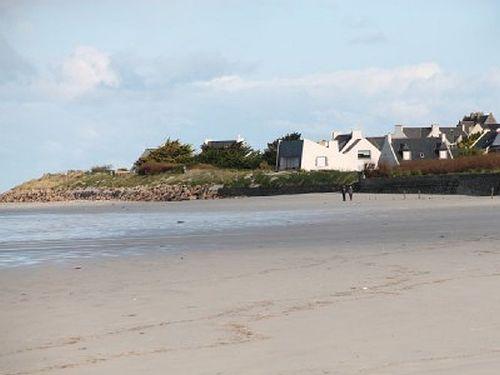 Strand in Dossen