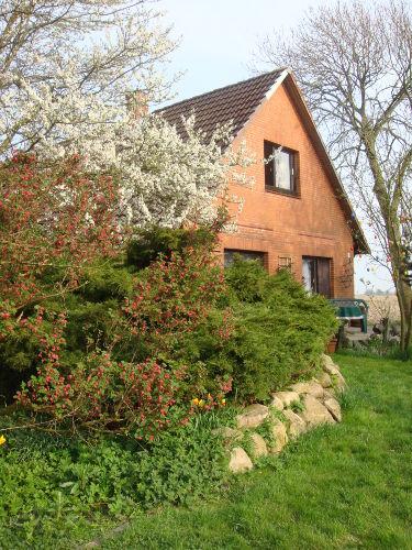 Ferienhaus Nesserdeich 8